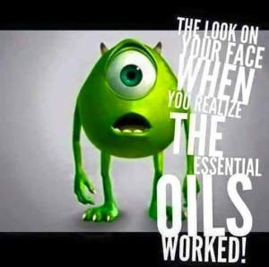 Chemical Free Home With Young Living Essential Oils